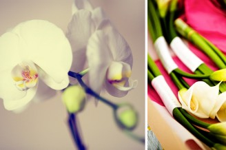 Orchids in St Barths for a wedding at Le Toiny Hotel by St Barths wedding photographer Kyle Coburn