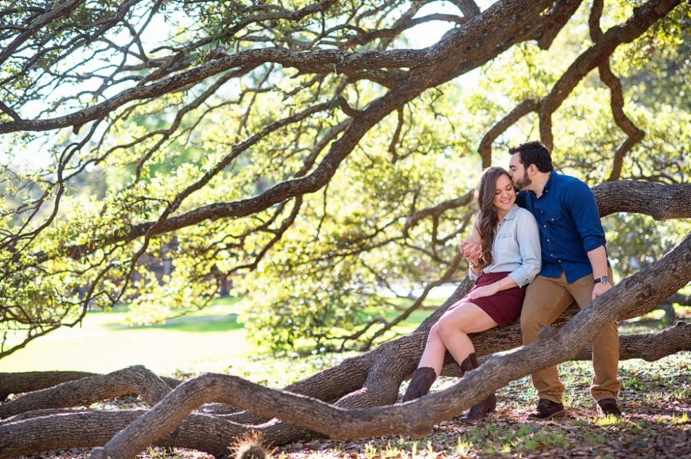 Engagement photos at the century tree